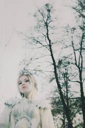 Winter Kingdom by NataliaDrepina