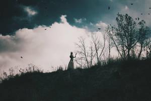 Fly away by NataliaDrepina