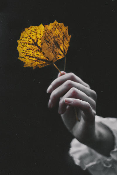 Letters of Autumn by NataliaDrepina