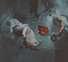 The daguerreotype by NataliaDrepina