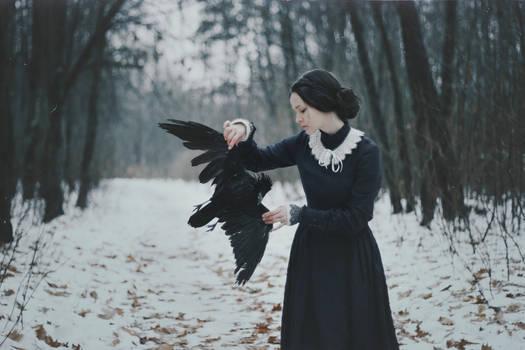 Winter silenced the birds