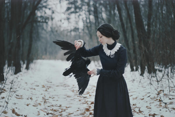 Winter silenced the birds by NataliaDrepina