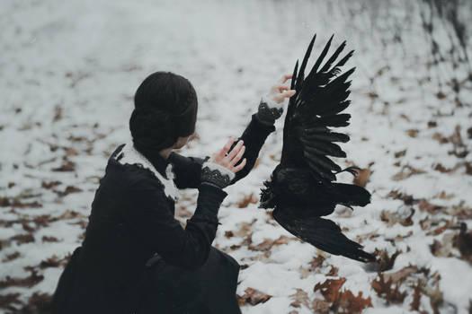 The path of dead silence