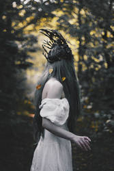 Wilted gold of the faceless forest