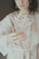 Fragile like a flower by NataliaDrepina
