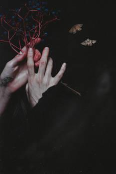 Te Grapes of Sorrow