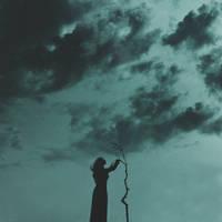 I am a broken tree by NataliaDrepina