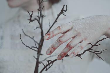 Winter grazes by NataliaDrepina