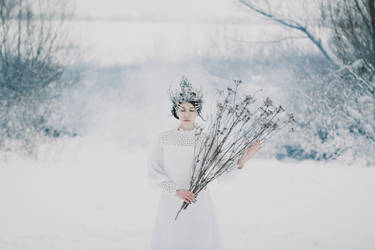 Misty winter dreams by NataliaDrepina