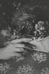 Deceased pet by NataliaDrepina
