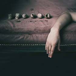 Empty shell by NataliaDrepina