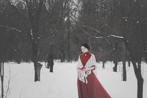 Winter Elm Garden