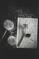 Seeds of your words