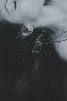 Dream of dead flower