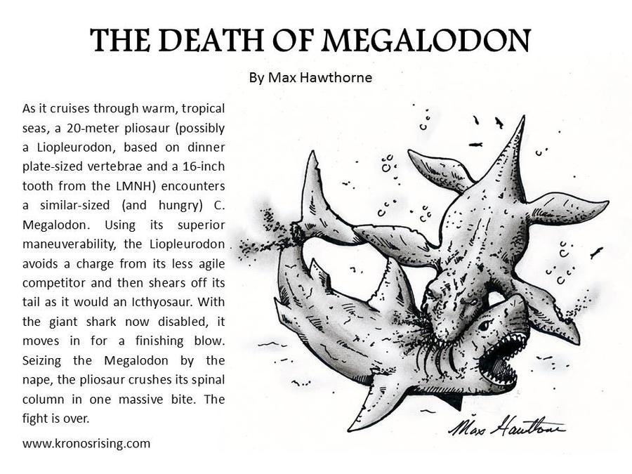 Pliosaur Vs Megalodon by MaxHawthorne on DeviantArt
