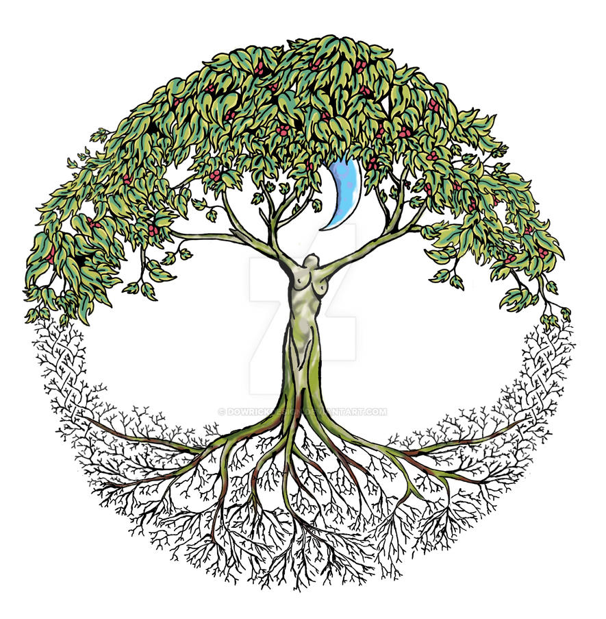 Simple Tree Of Life Designs For Painting