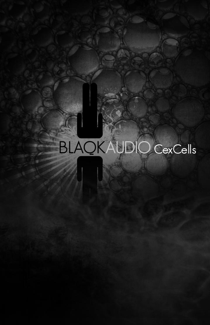 Blaqk Audio Poster 2 by pablorenauld