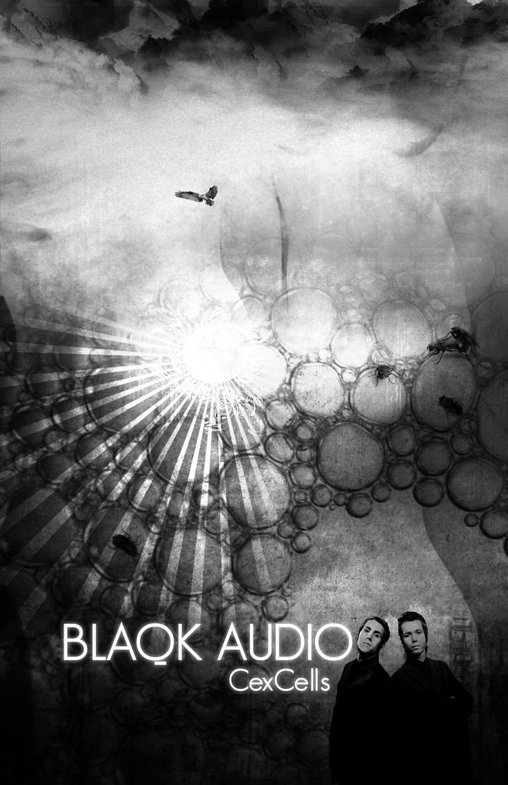Blaqk Audio Poster 3 by pablorenauld