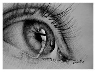 Eye by pablorenauld