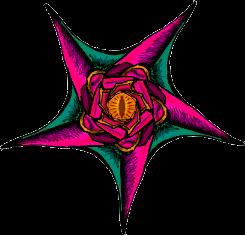 Drawchemy + Ravioli - Flower Pentagram