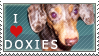 Doxie Stamp by dappledoxie