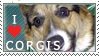 Corgi Stamp by dappledoxie