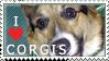Corgi Stamp by dappledoxie
