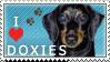 Doxie Stamp 2 by dappledoxie
