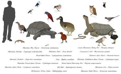 Extinct Island Fauna - Mauritius