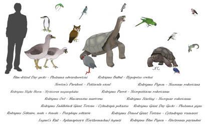 Extinct Island Fauna - Rodrigues