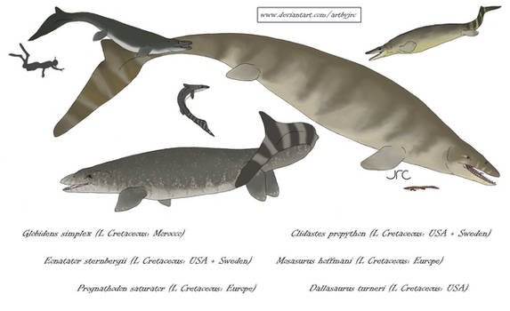 Giant sea lizards 1 - Mosasaurine Mosasaurs