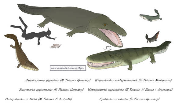 Croco-frogs of the Triassic - Capitosaurians