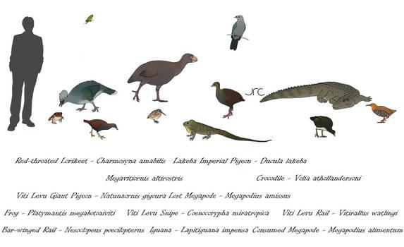 Extinct Island Fauna - Melanesia 2
