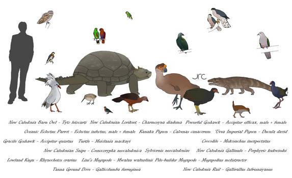 Extinct Island Fauna - Melanesia 1
