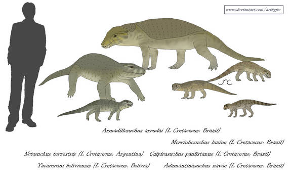 Armoured crocs - Notosuchians 1