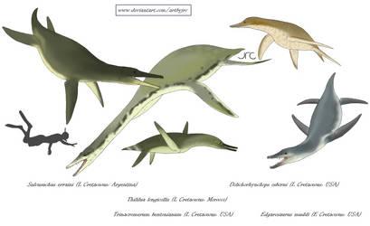 Pliosaur mimics - Polycotylids