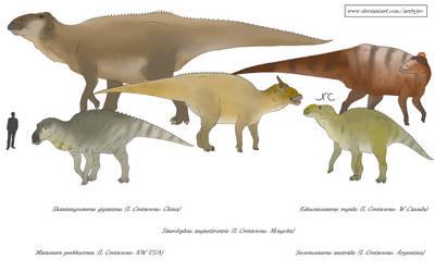 Honking chewers 1 - Saurolophine hadrosaurs