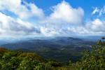 700 meters above sea level