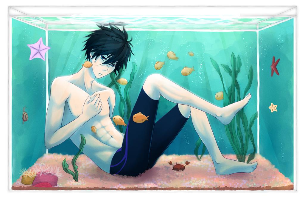 Aquarium by immuni