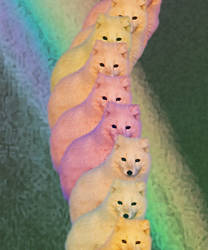 rainbow foxes by nef