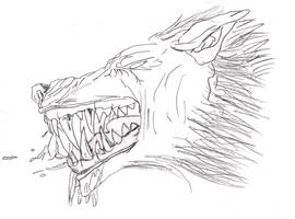 Werewolf Face by Disturbed-Minded