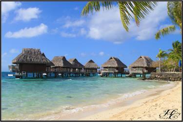 Tahiti 5