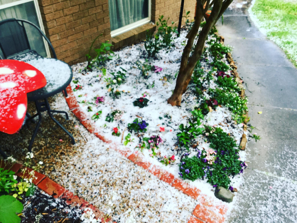 It hailed like crazy yesterday by PrincessOwly