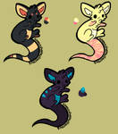 Baby Kangaroo adopts (open and points)