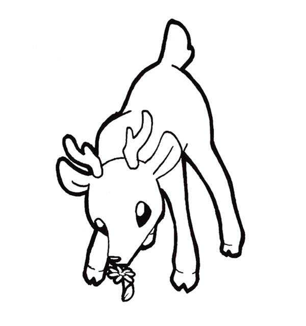 Chibi Deer by Xeohelios on DeviantArt