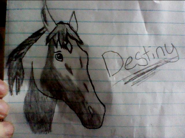 Horses and other stuffz *_* Destiny_portrait_by_xtheendlessfall-d3f1dhx