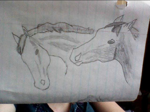 Horses and other stuffz *_* Best_of_buds___collab_by_xtheendlessfall-d3f430i