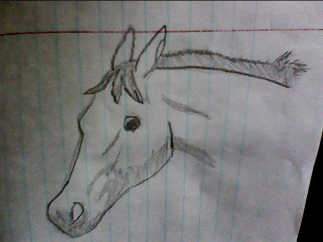 Horses and other stuffz *_* Questioning_by_xtheendlessfall-d3f466i