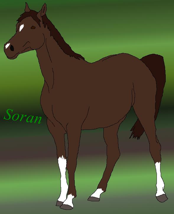 Horses and other stuffz *_* Soran_gift_by_xtheendlessfall-d3jl64j
