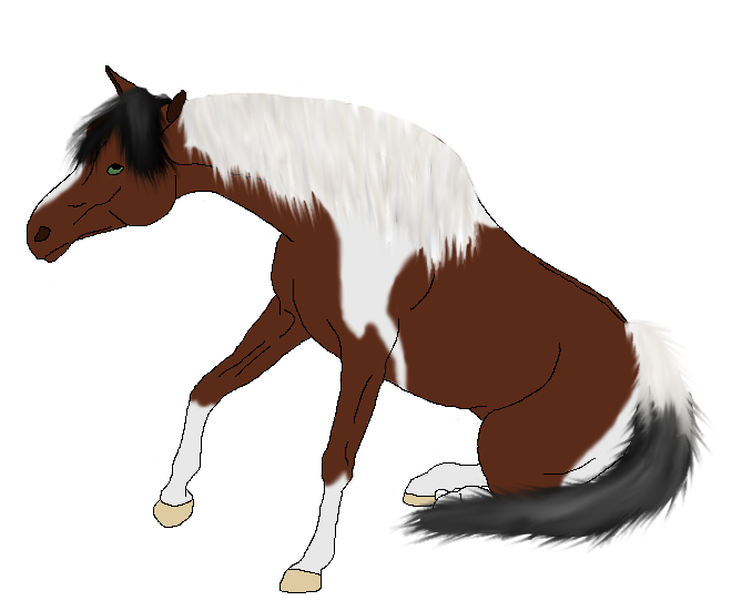 Horses and other stuffz *_* Tilly_by_xtheendlessfall-d3k1phs